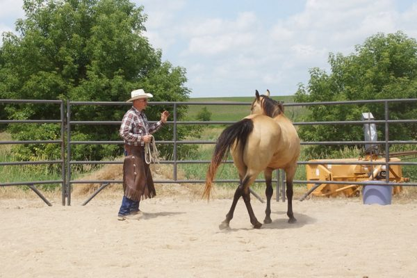 Mike with Buckskin 1 (1)
